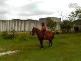 Horse_Riding_Lady