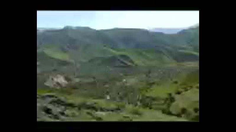 мучибуррахмони ансори
