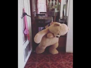 Люди танцуют в плюшевых медведях