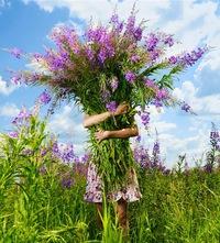Мария Золотова