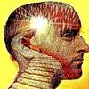 ВЕДЫ - Наука Философия Религия