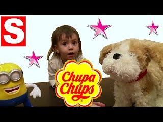 Миньон Раш  Новый Чупа Чупс с игрушкой и Интерактивная Собака робот Тузик обзор с Мисс Саей