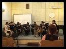 Vasilisa Gorochnaya. Passacaglia c-moll. Chamber orchestra Cadenza Perfecta Live video