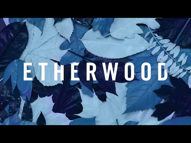 Etherwood - Under The Surface (feat. Vinny Ferraro)