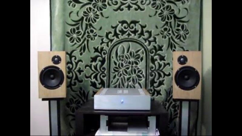 Самодельная аудиоаппаратура (ОМ2 Mark полочники на Asalab)