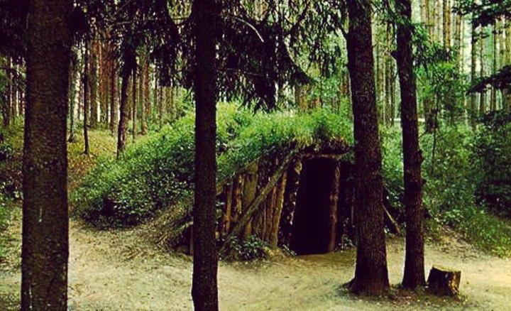 Дезертир из Таганрога 11 лет прятался от армии в лесах на Камчатке