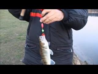 ловля судака с лодки щербаковы видео