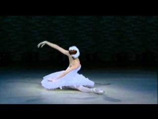 Saint-Saens, A Morte do Cisne - Como morre um Cisne, comparação de 7 prima-ballerinas