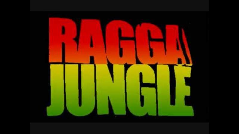 Drumbass / Hardtek Mix / Raggajungle / Reggae