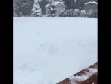 когда выпало много снега