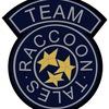 Raccoon Tales Team