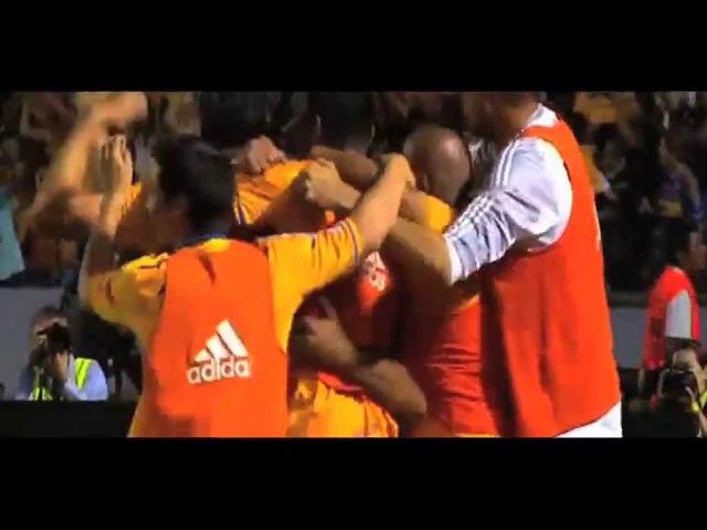 VAMOS TIGRES QUERIDO - Video Motivacional - Copa Libertadores