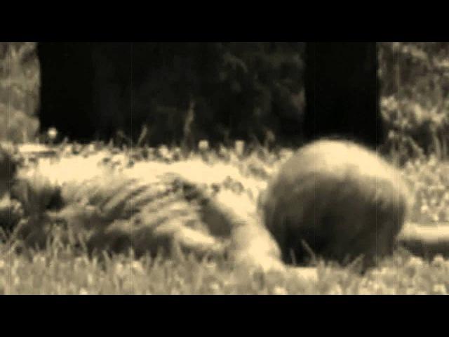 Navicon Torture Technologies - Pariah