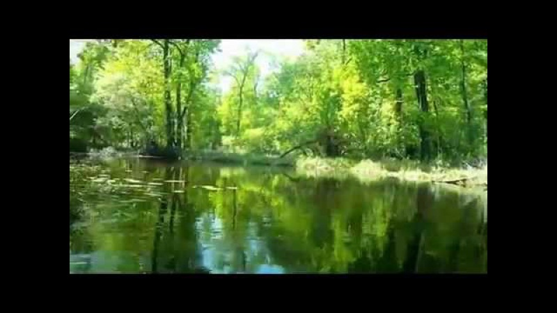 Лодочка. Музыка Сергея Чекалина. Boat.Music of Sergei Chekalin. 최고의 러시아 노래.