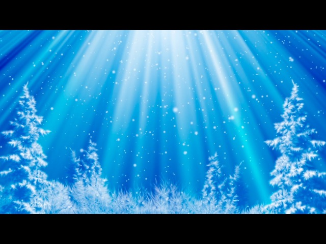 Зимний HD футаж снегопад в лесу | Winter HD footage snowfall in the woods