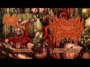 Homophobic Fecalpheliac - Suffocation Through Intestinal Constriction [Full Stream] (2015) Premiere