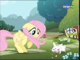 My little pony Опенинг от канала карусель