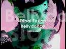 Tribal fusion music