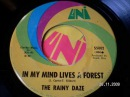 THE RAINY DAZE - In my mind lives a forest