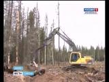 Архангельский ЦБК и группа Титан выступили за тушение лесных пожаров имеющейся техникой