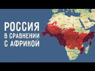 Вот как привычные нам карты искажают реальные размеры стран