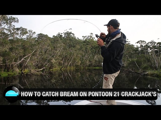How To Catch Bream On Hardbody Lures Pontoon 21 Crackjack