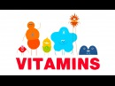 How do vitamins work Ginnie Trinh Nguyen