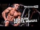 Топ 5 продуктов для роста мышц Можно ли вырасти на помидорах njg 5 ghjlernjd lkz hjcnf vsiw vj yj kb dshfcnb yf gjvbljhf