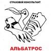 Страховой консультант АЛЬБАТРОС