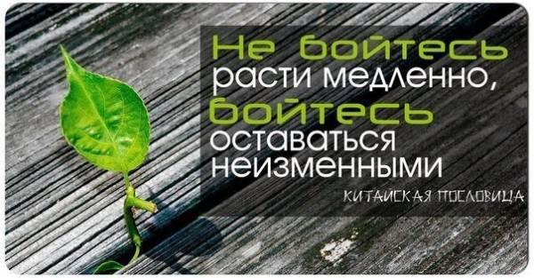 https://pp.vk.me/c629204/v629204303/39544/Xz4yZsYlZT8.jpg