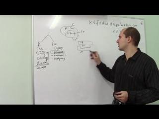 Основы психиатрии 5.5 - Аменция и Онейроид