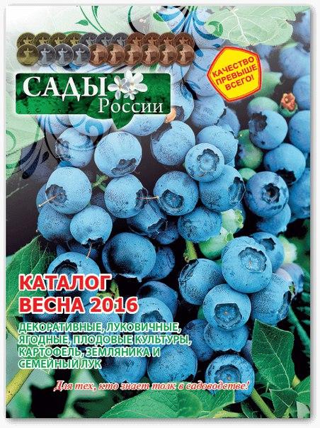 Ооо нпо сад и огород челябинск каталог