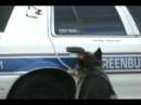 Smartest Police Dog Ever!