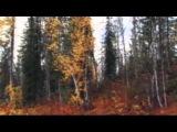 За туманом - Юрий Визбор