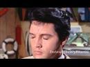 Elvis Presley Indescribably Blue