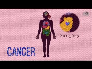 Чем раковые клетки отличаются от здоровых — TED Ed