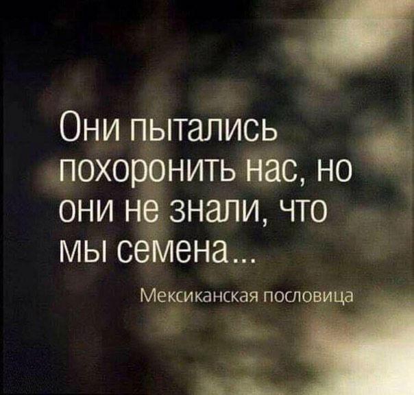 https://pp.userapi.com/c629206/v629206478/13298/Cb3mYZXrGVc.jpg