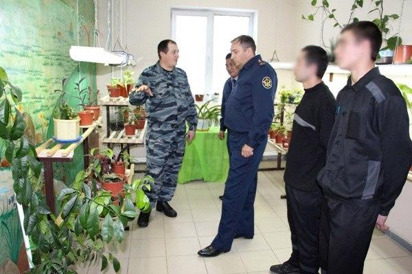 В СИЗО №1 состоялось открытие зимнего сада