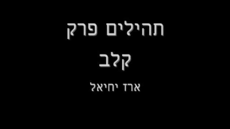 תהילים פרק קל ב ארז יחיאל Psalms Chapter 132 Erez Yechiel