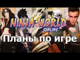 Ninja World -  Планы по игре