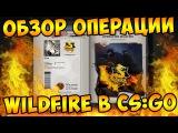 ОБЗОР НОВОЙ ОПЕРАЦИИ WILDFIRE В CS:GO