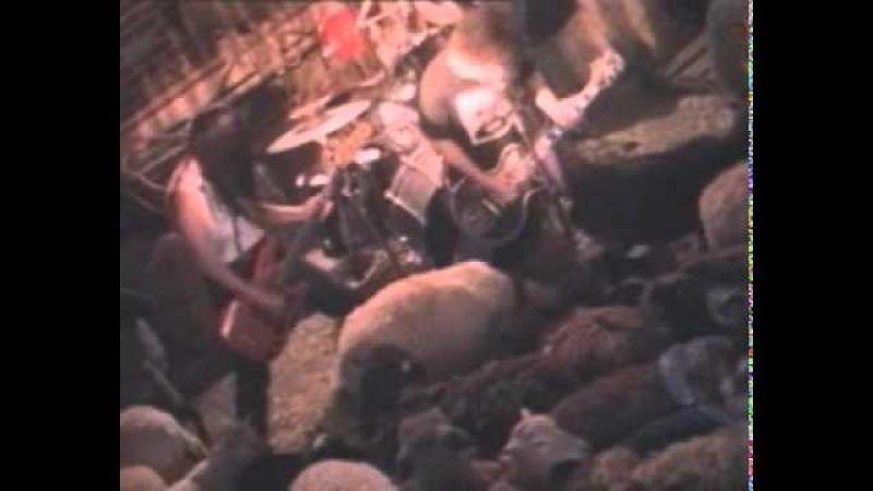 Melvins - Honey Bucket (Music Video)