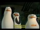 Пингвины Мадагаскар 6