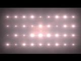 Free Stock Footage Flare Spotlight NeonWhite