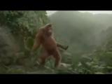 Я ждала, обезьяна танцует