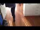 Ruby the Wombat goes crazy in the kitchen