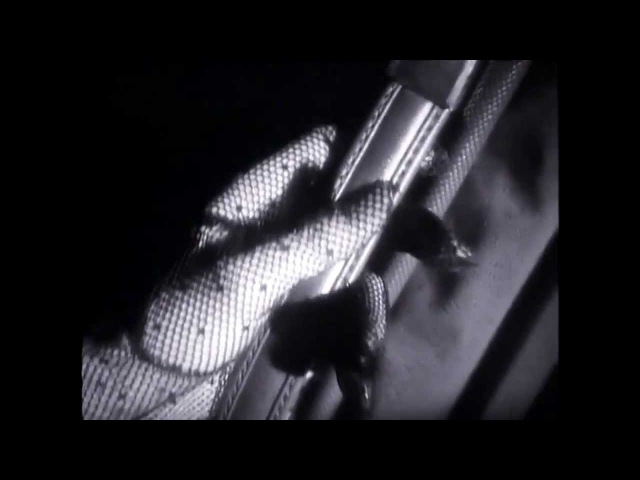 BAUHAUS -She's In Parties [Official Video] HD