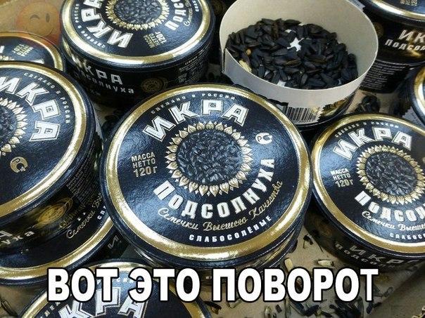 Налоговики пресекли нелегальную торговлю газом и дизельным топливом в Киевской области - Цензор.НЕТ 600