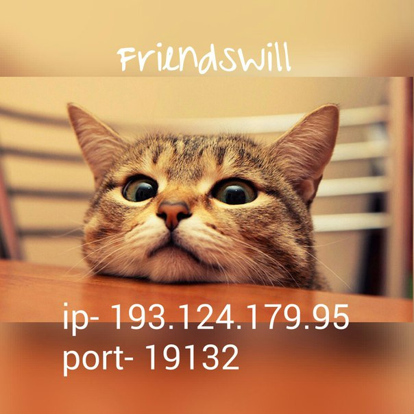 сервер Frienndswill