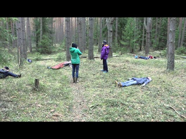 Энергетическая Зарядка В Лесу